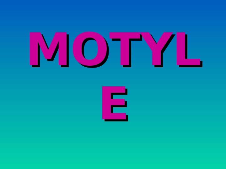 Motyle - Slajd 1