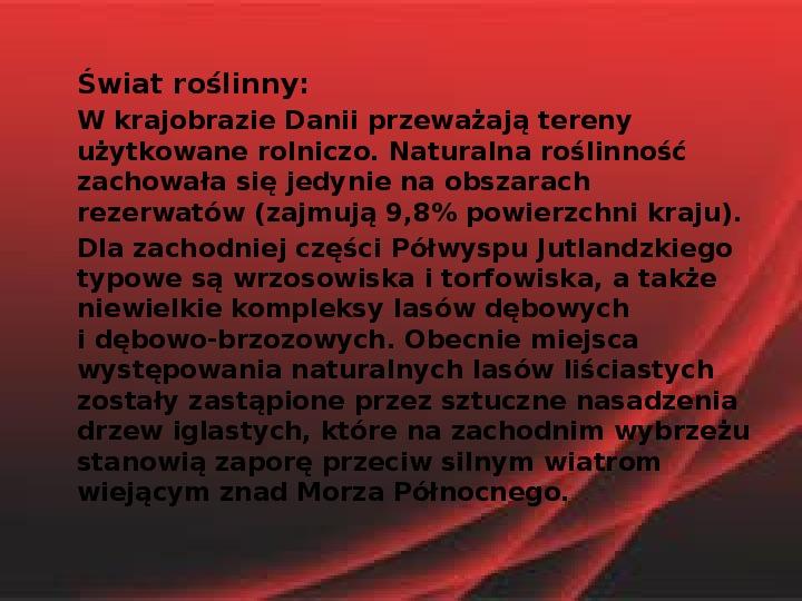 Dania - Slajd 13