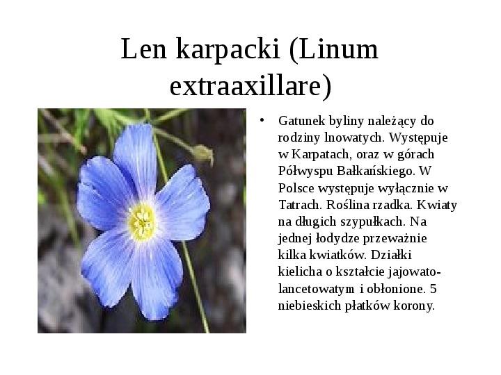 Tatrzański Park Narodowy - Slajd 10